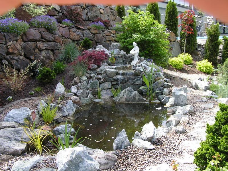 Basic Pond Kit